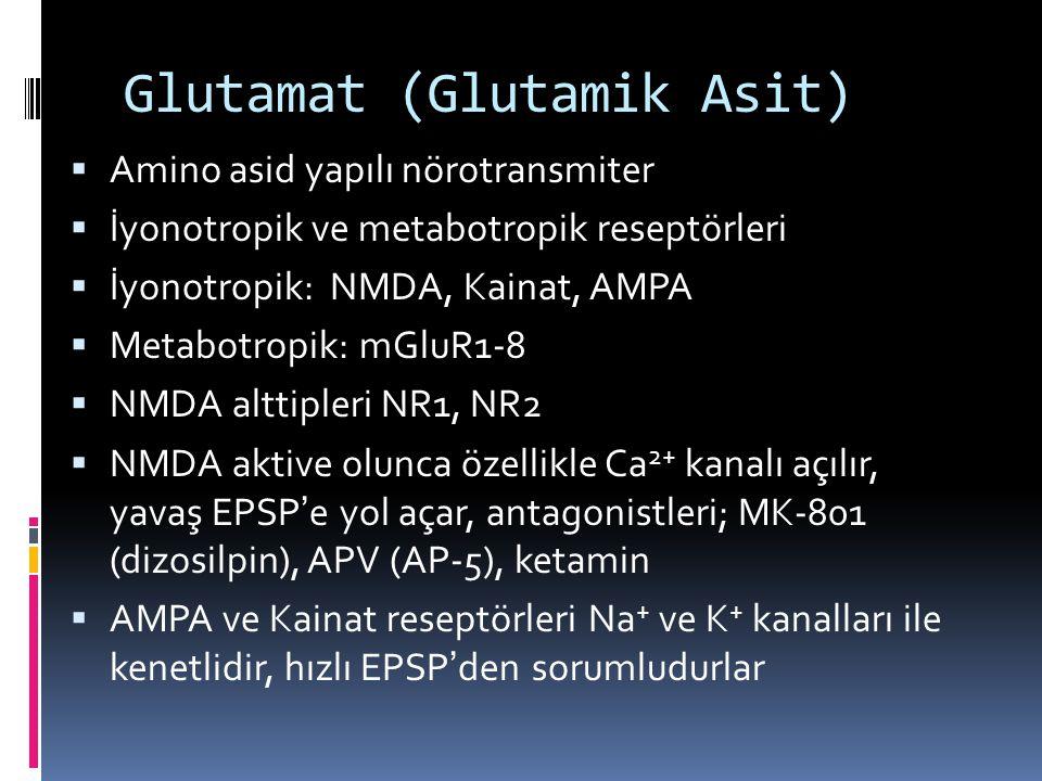 Glutamat (Glutamik Asit)  Amino asid yapılı nörotransmiter  İyonotropik ve metabotropik reseptörleri  İyonotropik: NMDA, Kainat, AMPA  Metabotropi