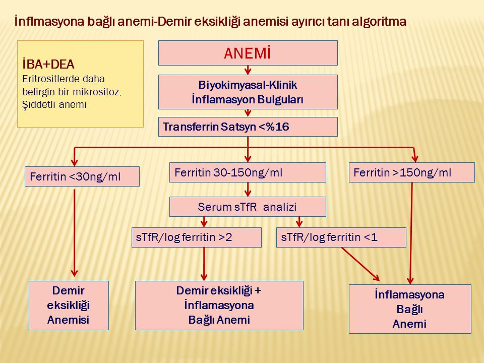 ANEMİ Biyokimyasal-Klinik İnflamasyon Bulguları Transferrin Satsyn <%16 Ferritin <30ng/ml Ferritin 30-150ng/mlFerritin >150ng/ml sTfR/log ferritin >2s