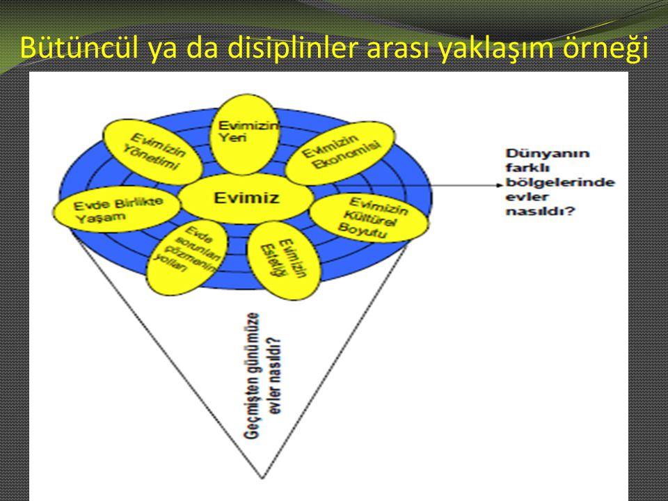 Bütüncül ya da disiplinler arası yaklaşım örneği