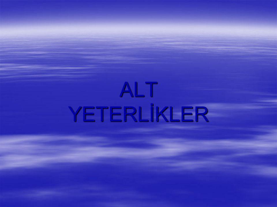 ALT YETERLİKLER