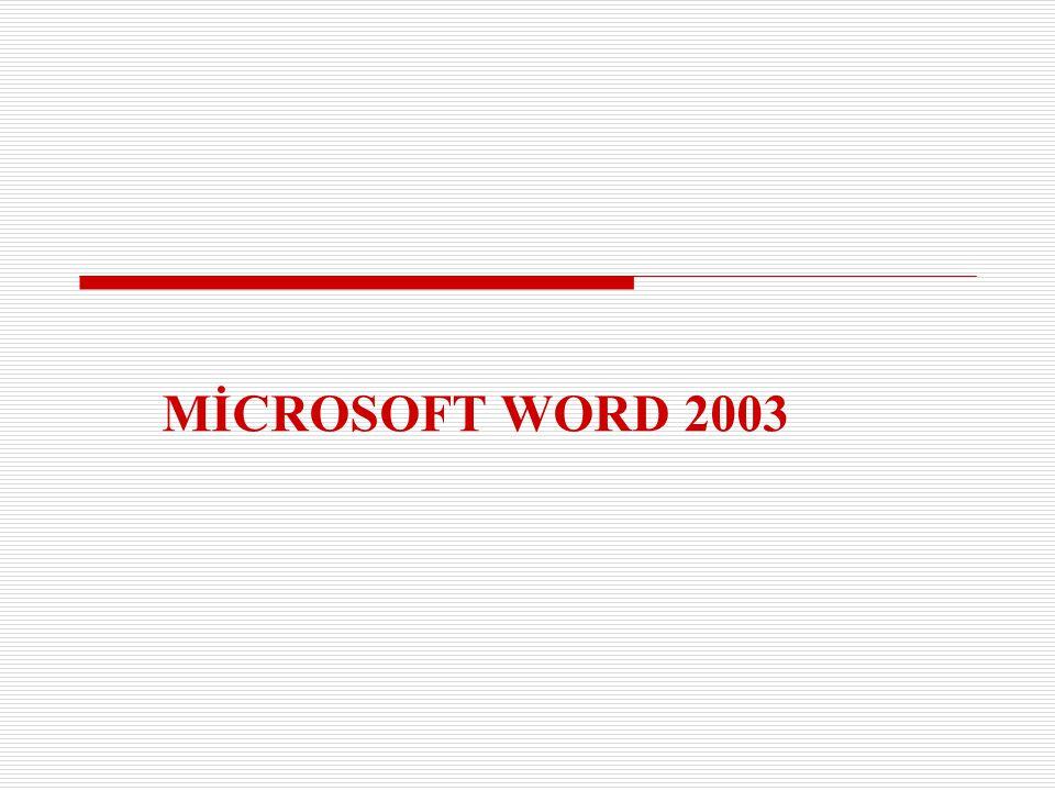 MİCROSOFT WORD 2003