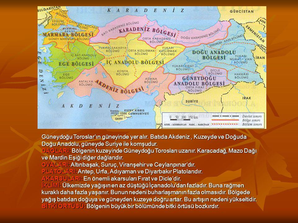Güneydoğu Toroslar'ın güneyinde yer alır. Batıda Akdeniz, Kuzeyde ve Doğuda Doğu Anadolu, güneyde Suriye ile komşudur. DAĞLARI: Bölgenin kuzeyinde Gün