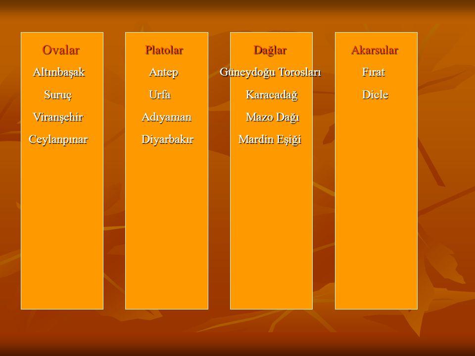 Ovalar Altınbaşak Suruç Viranşehir Ceylanpınar Platolar Antep Urfa Adıyaman Diyarbakır Dağlar Güneydoğu Torosları Karacadağ Mazo Dağı Mardin Eşiği Aka