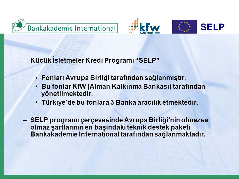 SELP Kredi Fonu 14,6 milyon Euro Kredi Fonu 14,6 milyon Euro Kur Riski Fonu 2,9 milyon Euro Kur Riski Fonu 2,9 milyon Euro AB'nin sağladığı 20 milyon Euro AB'nin sağladığı 20 milyon Euro Küçük İşletmeler Kredi Programı (SELP) Izmir – Kocaeli – Gaziantep Küçük İşletmeler Kredi Programı (SELP) Izmir – Kocaeli – Gaziantep KOBI Teknik Destek Paketi