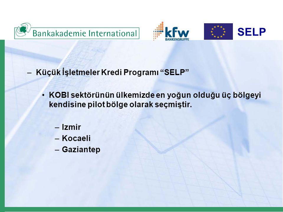 –Küçük İşletmeler Kredi Programı SELP KOBI sektörünün ülkemizde en yoğun olduğu üç bölgeyi kendisine pilot bölge olarak seçmiştir.