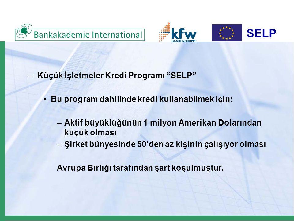 SELP –Küçük İşletmeler Kredi Programı SELP Bu program dahilinde kredi kullanabilmek için: –Aktif büyüklüğünün 1 milyon Amerikan Dolarından küçük olması –Şirket bünyesinde 50'den az kişinin çalışıyor olması Avrupa Birliği tarafından şart koşulmuştur.