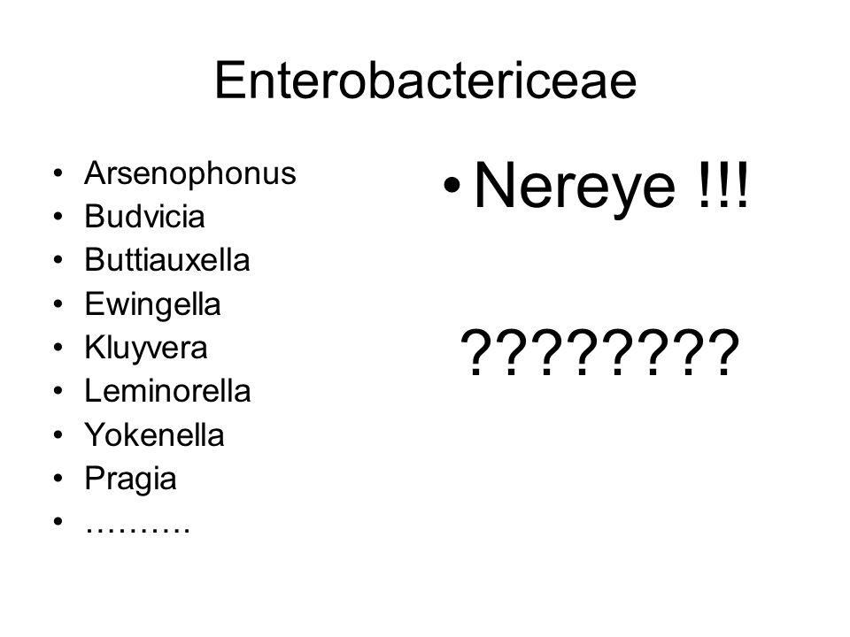 Enterobactericeae Arsenophonus Budvicia Buttiauxella Ewingella Kluyvera Leminorella Yokenella Pragia ………. Nereye !!! ????????