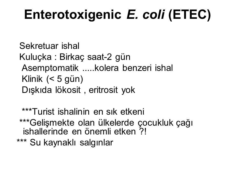 Enterotoxigenic E. coli (ETEC) Sekretuar ishal Kuluçka : Birkaç saat-2 gün Asemptomatik.....kolera benzeri ishal Klinik (< 5 gün) Dışkıda lökosit, eri