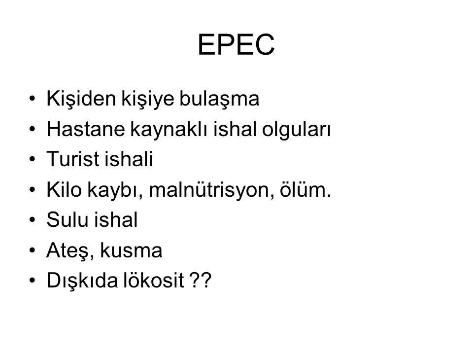 EPEC Kişiden kişiye bulaşma Hastane kaynaklı ishal olguları Turist ishali Kilo kaybı, malnütrisyon, ölüm. Sulu ishal Ateş, kusma Dışkıda lökosit ??
