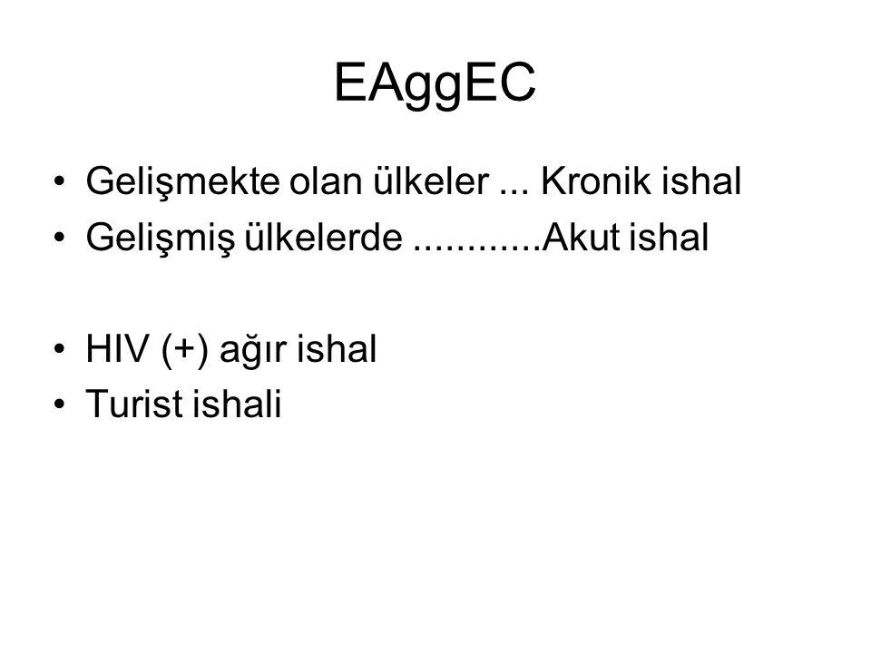 EAggEC Gelişmekte olan ülkeler... Kronik ishal Gelişmiş ülkelerde............Akut ishal HIV (+) ağır ishal Turist ishali