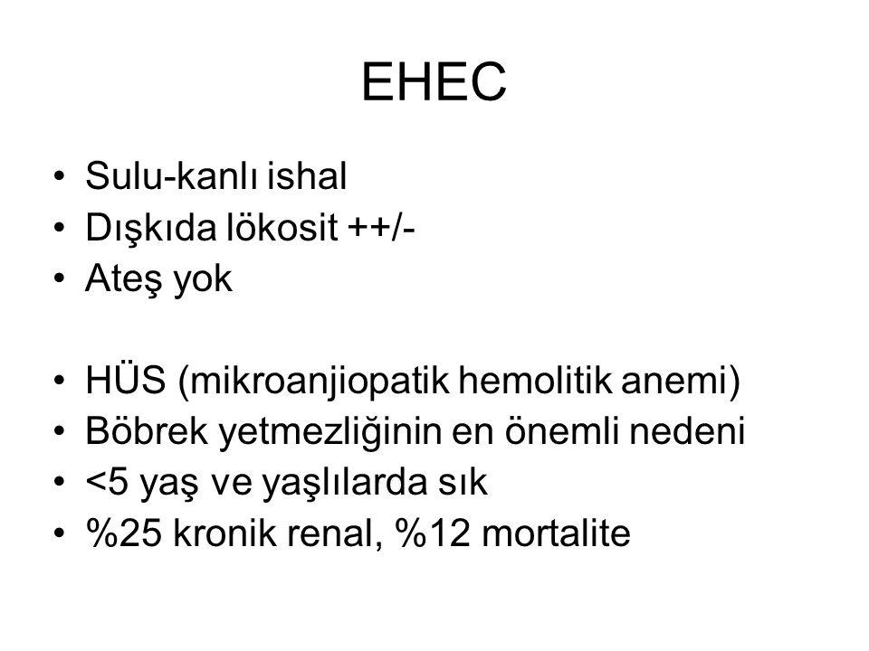 EHEC Sulu-kanlı ishal Dışkıda lökosit ++/- Ateş yok HÜS (mikroanjiopatik hemolitik anemi) Böbrek yetmezliğinin en önemli nedeni <5 yaş ve yaşlılarda s