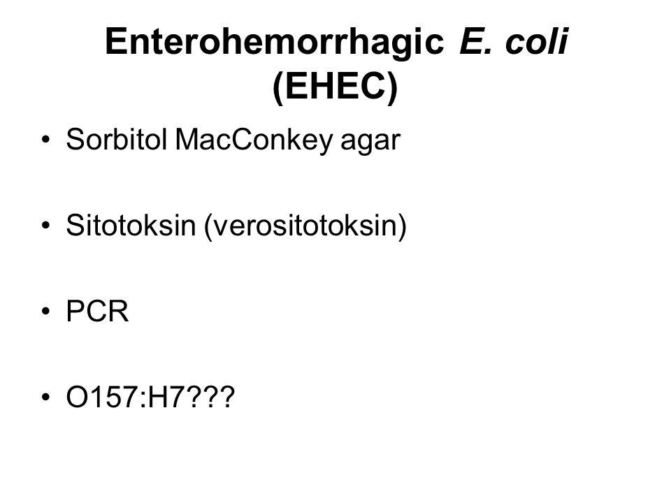Enterohemorrhagic E. coli (EHEC) Sorbitol MacConkey agar Sitotoksin (verositotoksin) PCR O157:H7???