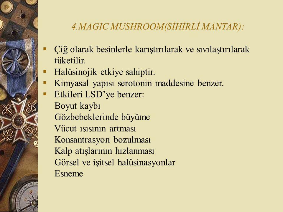 4.MAGIC MUSHROOM(SİHİRLİ MANTAR):  Çiğ olarak besinlerle karıştırılarak ve sıvılaştırılarak tüketilir.  Halüsinojik etkiye sahiptir.  Kimyasal yapı