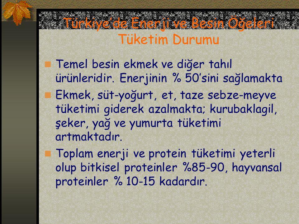 Türkiye'de Enerji ve Besin Öğeleri Tüketim Durumu Temel besin ekmek ve diğer tahıl ürünleridir. Enerjinin % 50'sini sağlamakta Ekmek, süt-yoğurt, et,