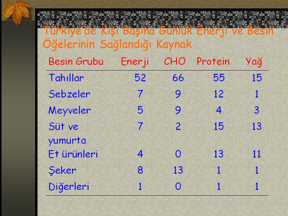 Türkiye'de Kişi Başına Günlük Enerji ve Besin Öğelerinin Sağlandığı Kaynak