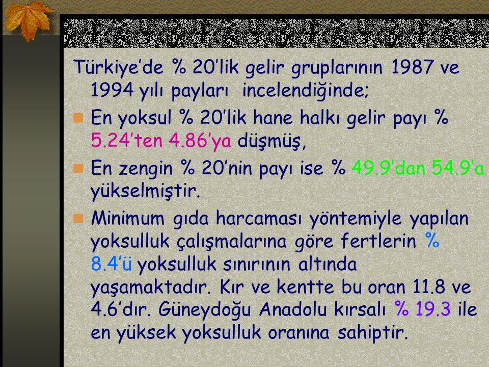Türkiye'de % 20'lik gelir gruplarının 1987 ve 1994 yılı payları incelendiğinde; En yoksul % 20'lik hane halkı gelir payı % 5.24'ten 4.86'ya düşmüş, En