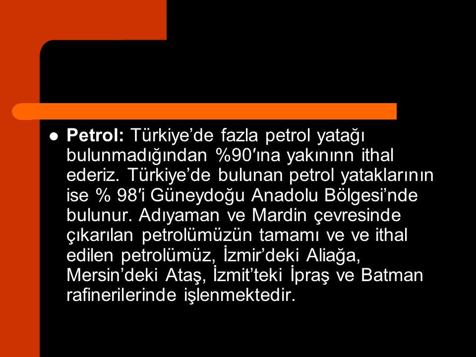 Petrol: Türkiye'de fazla petrol yatağı bulunmadığından %90′ına yakınınn ithal ederiz. Türkiye'de bulunan petrol yataklarının ise % 98′i Güneydoğu Anad
