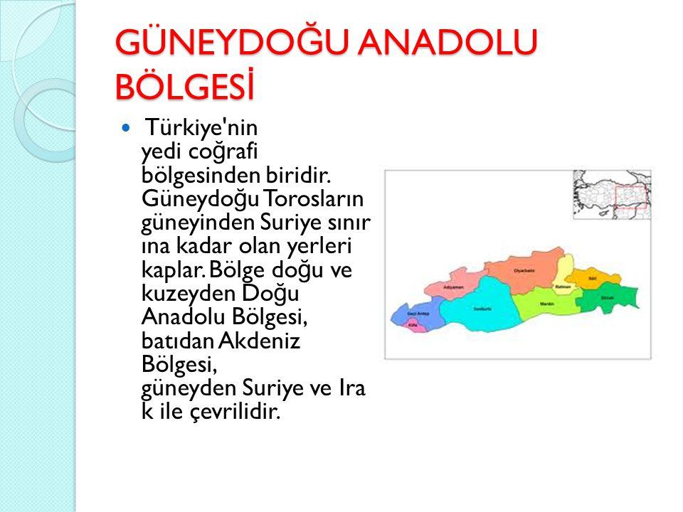GÜNEYDO Ğ U ANADOLU BÖLGES İ Türkiye'nin yedi co ğ rafi bölgesinden biridir. Güneydo ğ u Torosların güneyinden Suriye sınır ına kadar olan yerleri kap