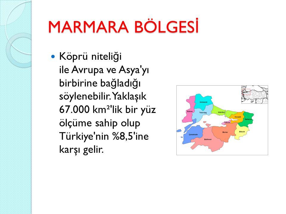 KARADENİZ BÖLGESİ İ smini Karadeniz den alan, Sakarya Ovası nın do ğ usundan Gürcis- tan sınırına kadar uzanan Türkiye nin yedi co ğ rafi bölgesinden biridir.