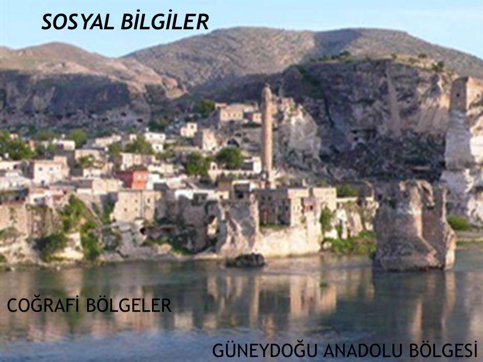 Endüstri: Besin : Diyarbakır, Şanlıurfa Pamuklu Dokuma : Gaziantep, Adıyaman, Diyarbakır Battaniye, Kilim, Halı : Gaziantep, Siirt Petrol Rafinerisi : Batman