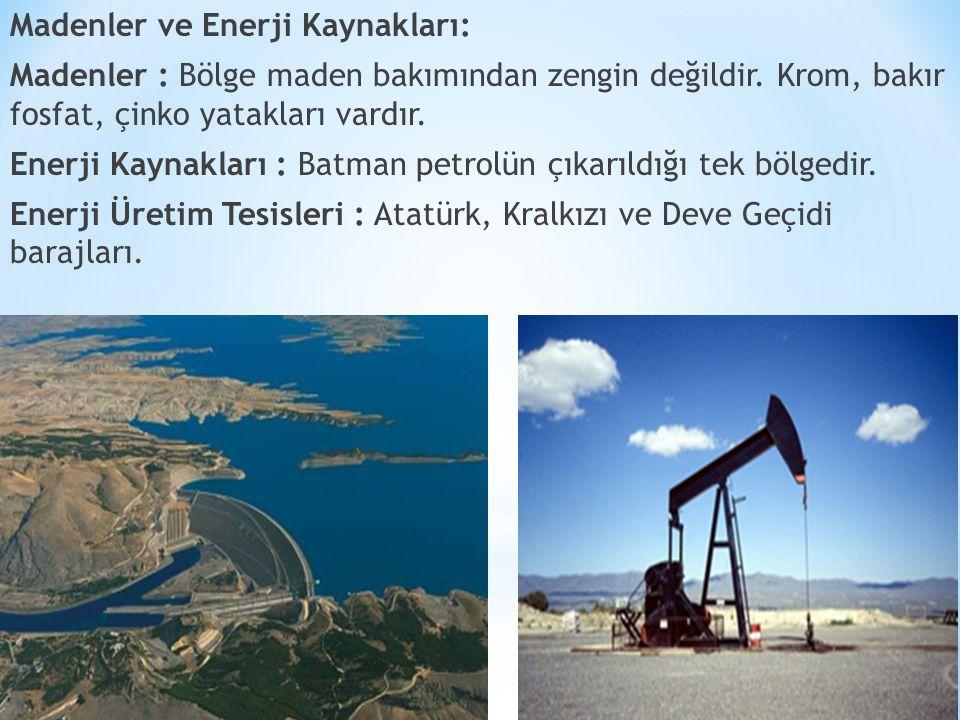 Madenler ve Enerji Kaynakları: Madenler : Bölge maden bakımından zengin değildir.