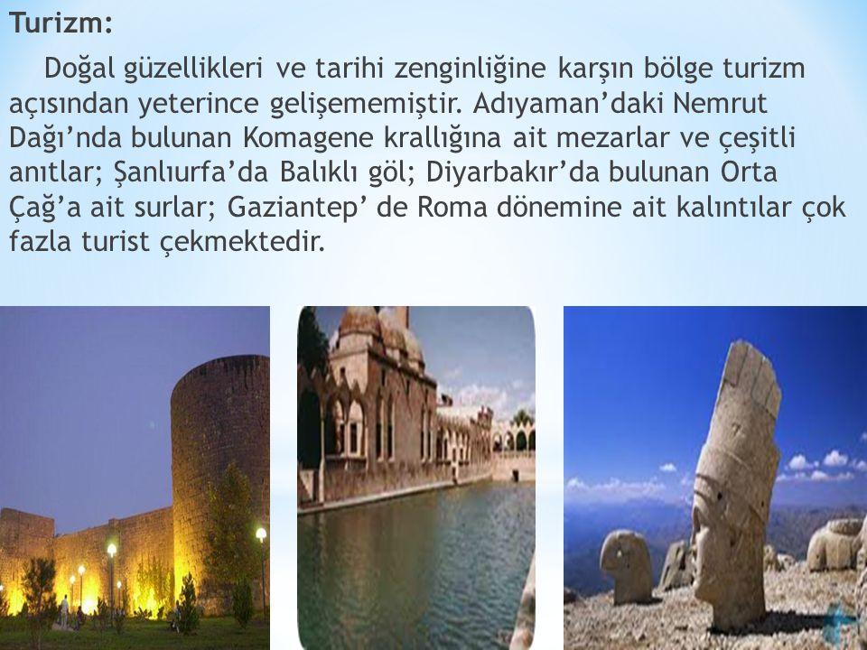 Turizm: Doğal güzellikleri ve tarihi zenginliğine karşın bölge turizm açısından yeterince gelişememiştir.
