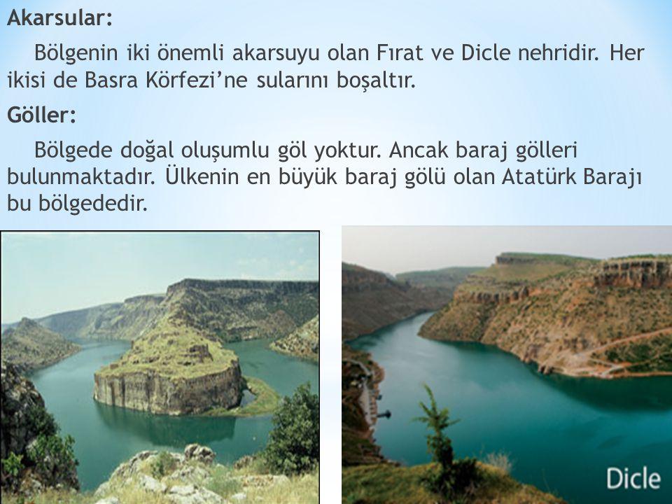 Akarsular: Bölgenin iki önemli akarsuyu olan Fırat ve Dicle nehridir.