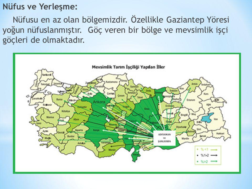 Nüfus ve Yerleşme: Nüfusu en az olan bölgemizdir.Özellikle Gaziantep Yöresi yoğun nüfuslanmıştır.