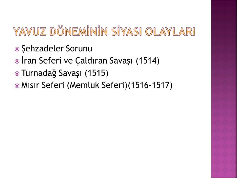  Yavuz Sultan Selim babasının yerine tahta geçtikten sonra, ağabeyleri Ahmet ve Korkut un tahtı ele geçirmelerini engellemek amacıyla Fatih Kanunnamesine dayanarak şehzadeleri etkisiz hale getirdi.