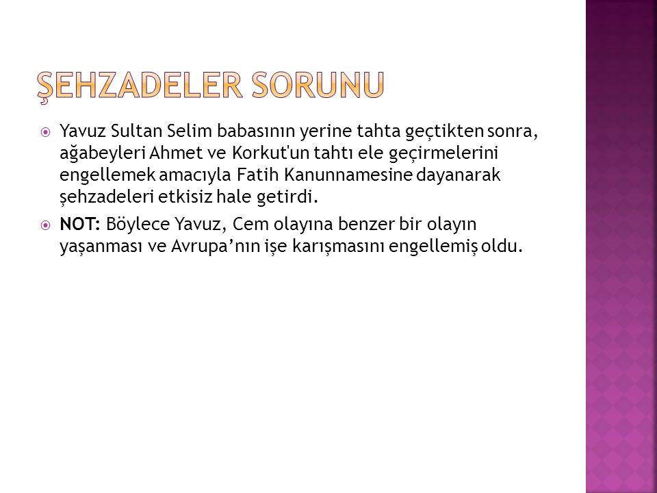  Sebep: Safevilerin Doğu Anadolu yu ele geçirmek istemeleri ve Şiilik propagandası yapmaları.