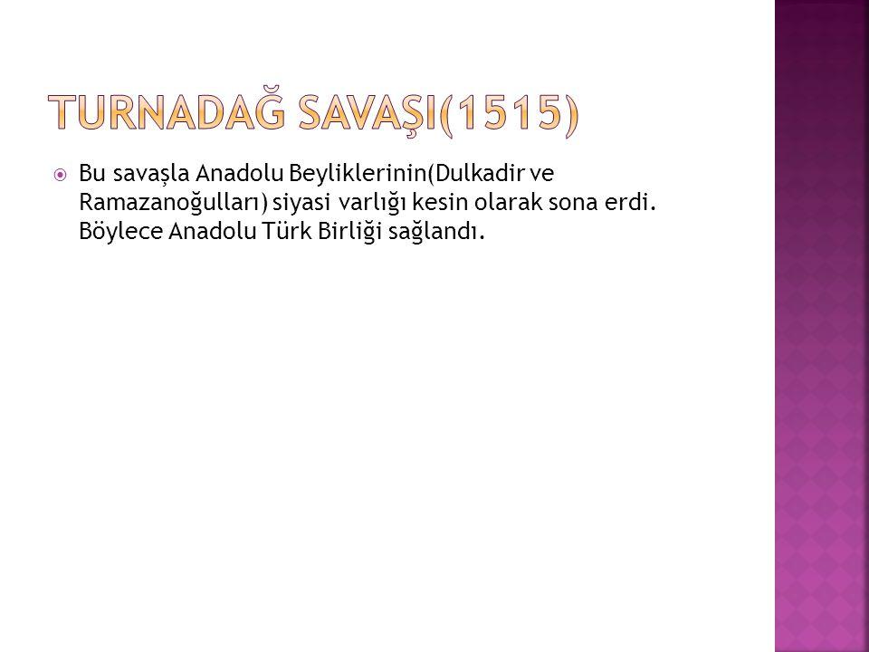 Sebepleri a)- Fatih döneminde başlayan Hicaz su yolları meselesi b)- Memlüklerin Cem Sultan ı himaye etmeleri c)- Osmanlılar ile Memlükler arasında Dulkadiroğulları yüzünden çekişme.