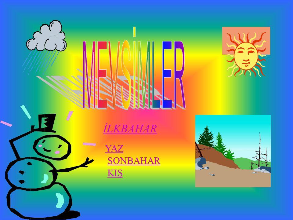 İlkbaharda havalar ısınmaya başlar. İlkbahar ayları MART NİSAN MAYIS