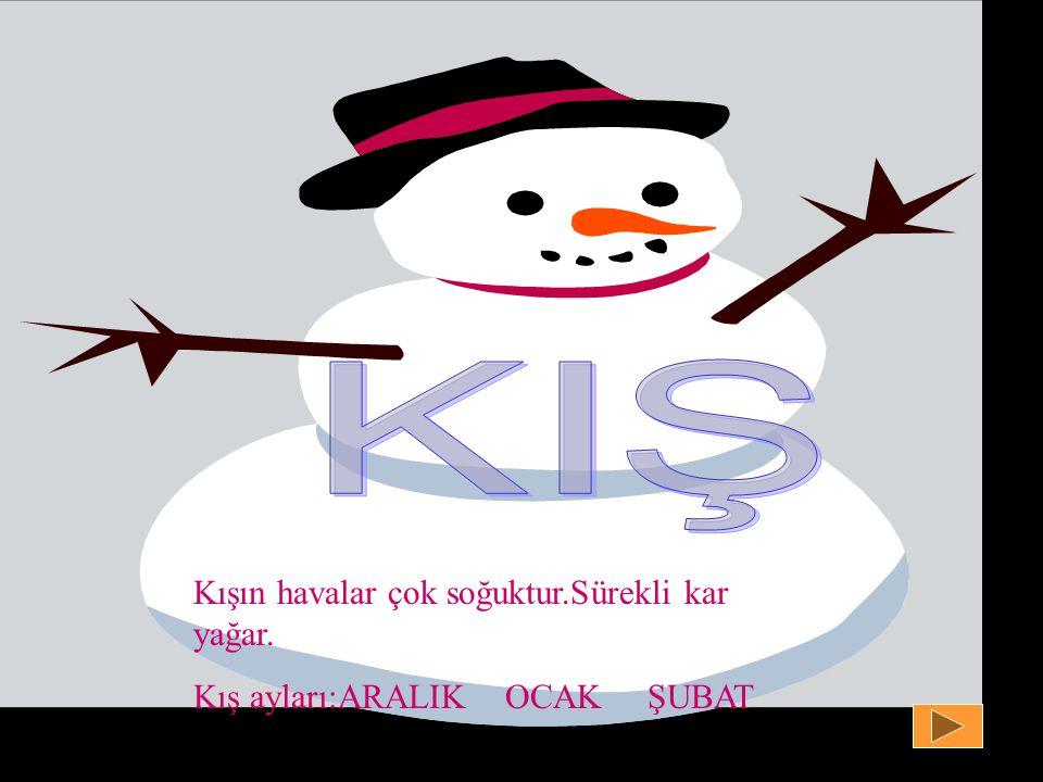 Kışın havalar çok soğuktur.Sürekli kar yağar. Kış ayları:ARALIK OCAK ŞUBAT