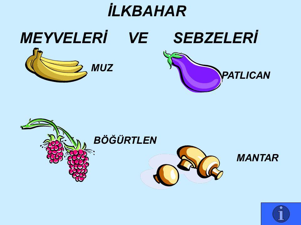 İLKBAHAR KIYAFETLERİ BLUZ İNCE PANTOLON