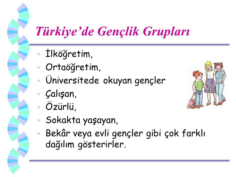 Türkiye'de Gençlik Grupları w İlköğretim, w Ortaöğretim, w Üniversitede okuyan gençler w Çalışan, w Özürlü, w Sokakta yaşayan, w Bekâr veya evli gençler gibi çok farklı dağılım gösterirler.