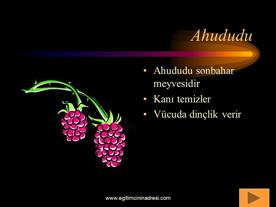 Armut Armut sonbahar meyvelerindendir C vitamini içerir Sindirim üzerinde etkisi vardır