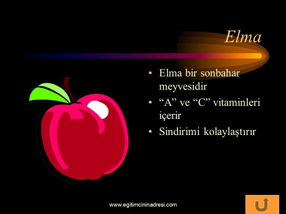 Ahududu Ahududu sonbahar meyvesidir Kanı temizler Vücuda dinçlik verir