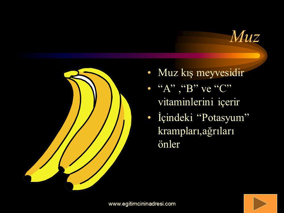 Elma Elma bir sonbahar meyvesidir A ve C vitaminleri içerir Sindirimi kolaylaştırır