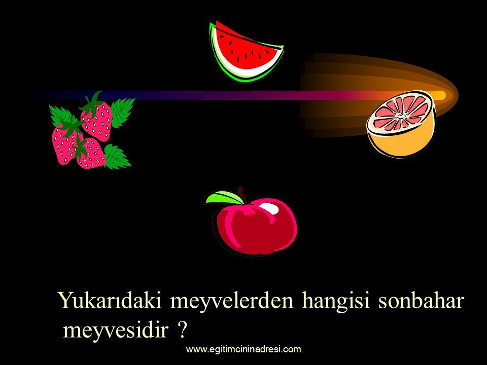 Yukarıdaki meyvelerden hangisi yaz meyvesidir ?