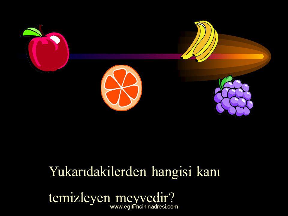 Yukarıdaki meyvelerden hangisi sonbahar meyvesidir ?