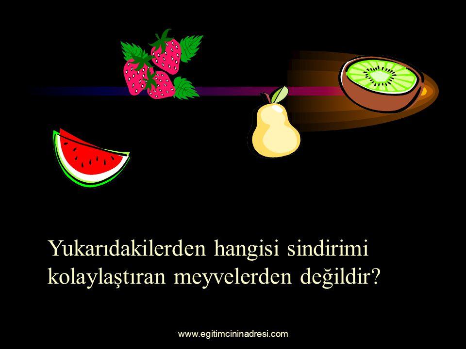 Yukarıdakilerden hangisi kanı temizleyen meyvedir?