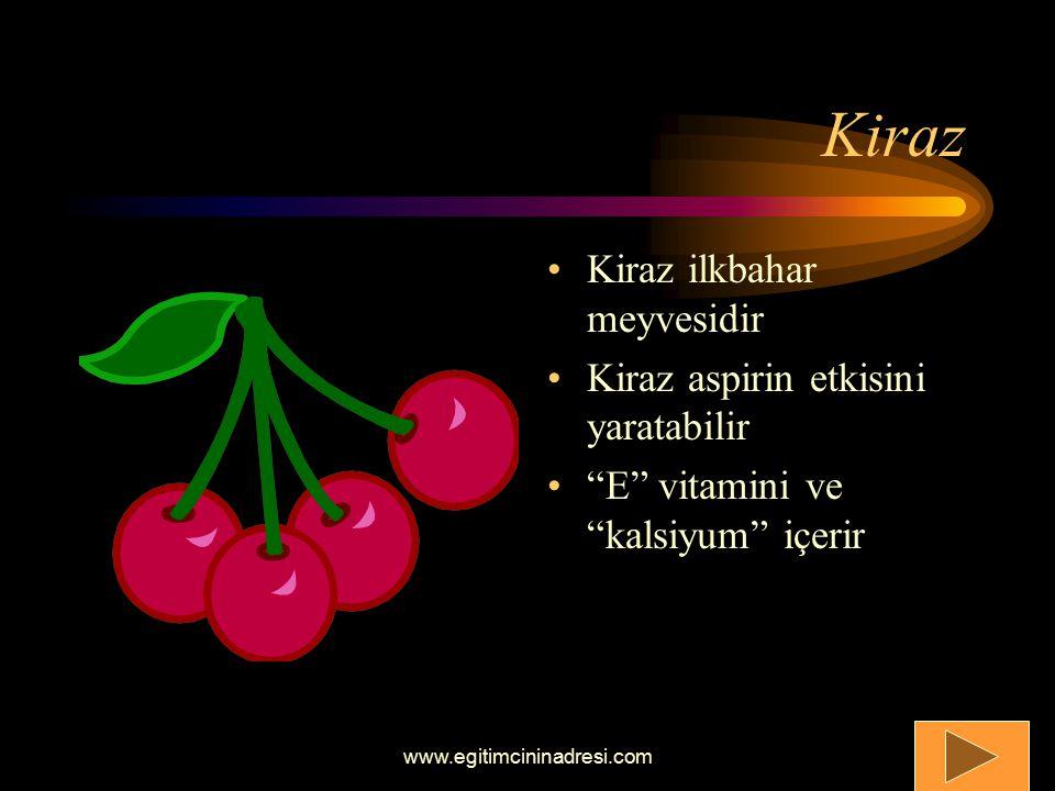 İlk Bahar Meyveleri Yaz Meyveleri Sonbahar Meyveleri Kış Meyveleri