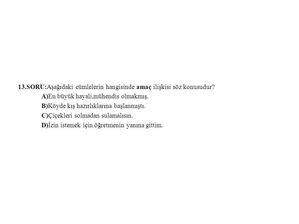 13.SORU:Aşağıdaki cümlelerin hangisinde amaç ilişkisi söz konusudur? A)En büyük hayali,mühendis olmakmış. B)Köyde kış hazırlıklarına başlanmıştı. C)Çi