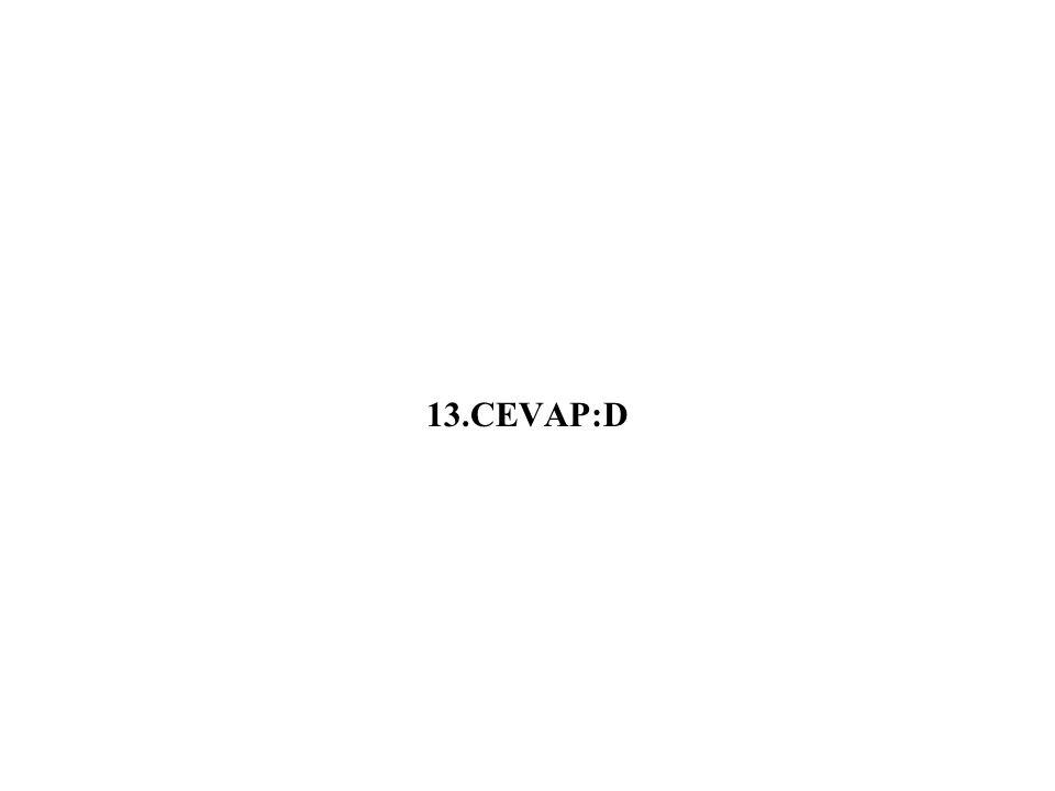 13.CEVAP:D
