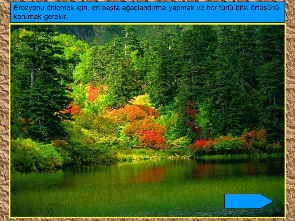 Erozyonu önlemek için, en başta ağaçlandırma yapmak ve her türlü bitki örtüsünü korumak gerekir.