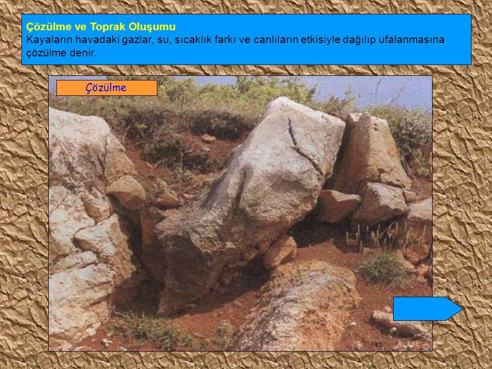 6- Çernozyum ( kara ) topraklar : Orta kuşağın yarı nemli step ( bozkır ) bölgelerinde oluşur.