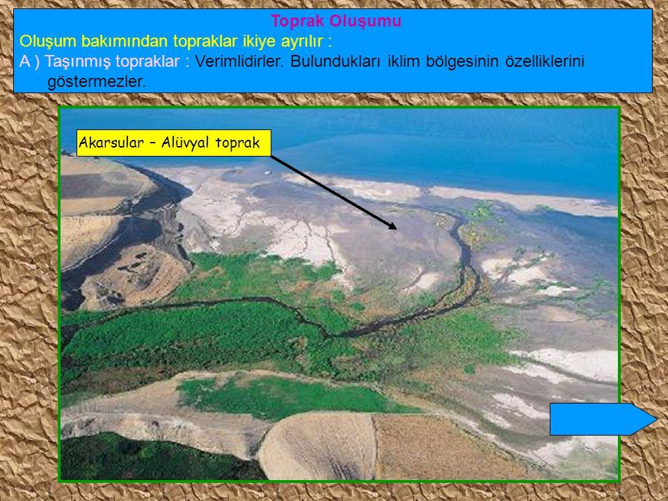 Ülkemizde heyelanlar en çok, Karadeniz bölgesinde özellikle de Doğu Karadeniz'de olmaktadır.