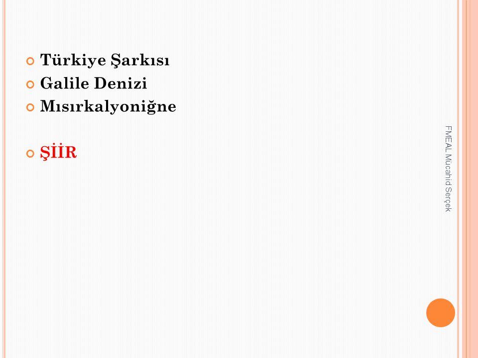 Türkiye Şarkısı Galile Denizi Mısırkalyoniğne ŞİİR FMEAL Mücahid Serçek