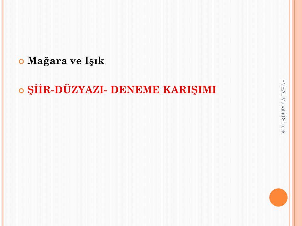 Mağara ve Işık ŞİİR-DÜZYAZI- DENEME KARIŞIMI FMEAL Mücahid Serçek