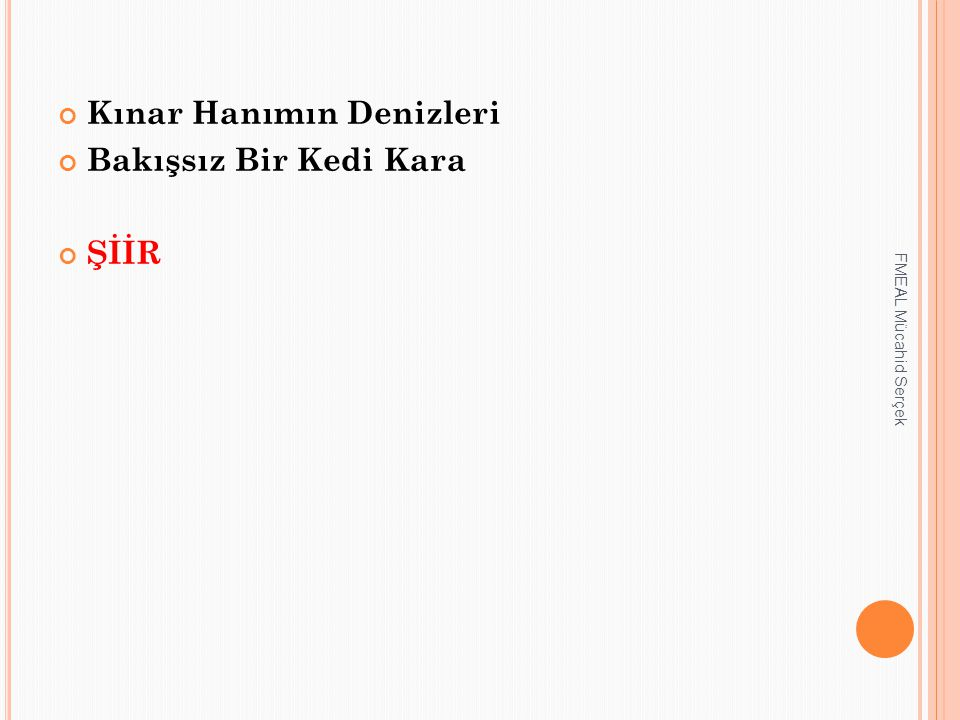 Kınar Hanımın Denizleri Bakışsız Bir Kedi Kara ŞİİR FMEAL Mücahid Serçek